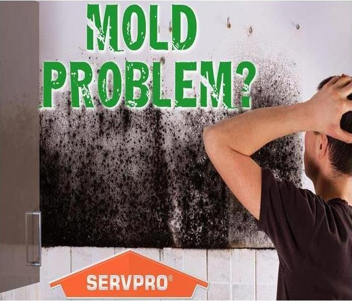 Mold covered wall in bathroom
