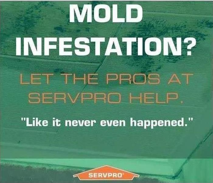 Green logo of mold infested ceiling letting you know we are here to help